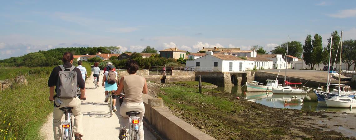 Découverte de l'île de Ré à vélo